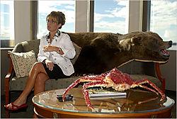 Palin bear
